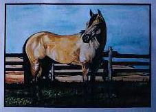 """Buckskin watercolor on paper 16"""" x 20"""""""