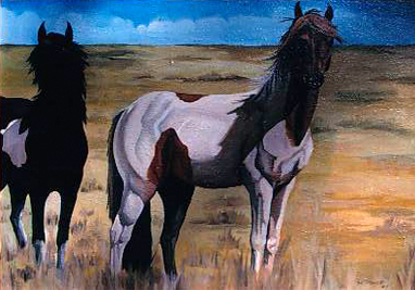 "Dineh Horses oil on canvas 24"" x 36"""