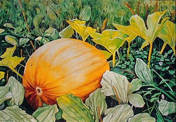 """Peter's Pumpkin watercolor 16"""" x 20"""""""